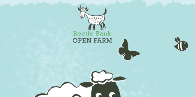 Beetle Bank Farm